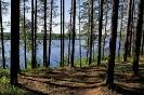 Куртна озеро Консу