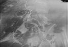 Аэрофотосъемка 1932 год